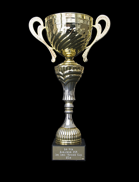 Md ica maxi va rmdo cup2014