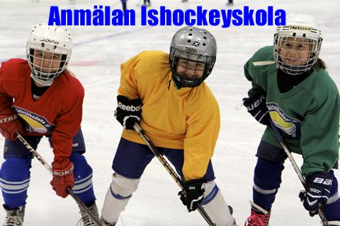 Md hockeyskola anm lan kopiera