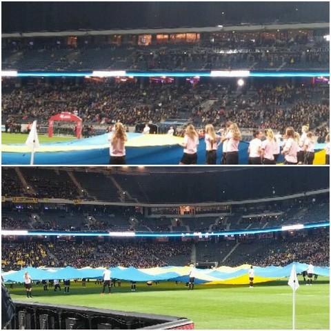 Md fotboll flagga