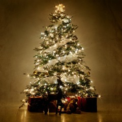 Sm square christmas tree hot room radiator