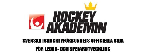 Md hockeyakademin top slide