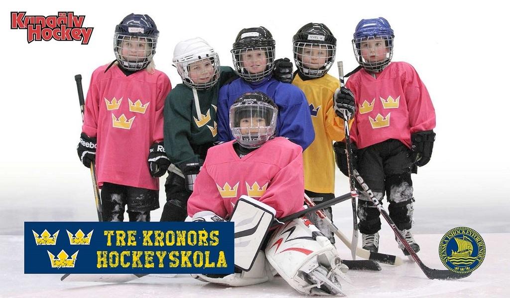 Hockeyskola 2015