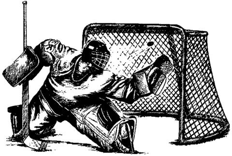 Md 15728 hockeymalvakt